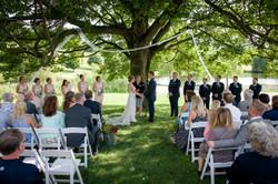 Summer Wedding under the Maple Tree