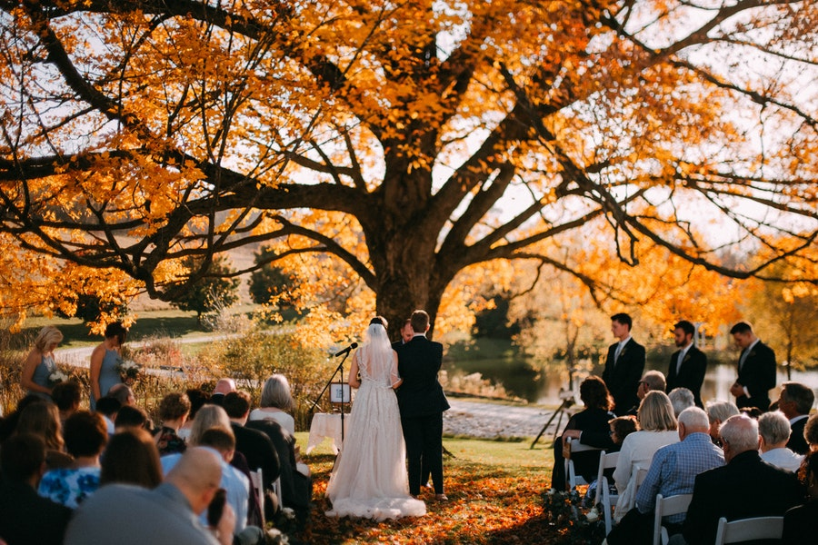 Fall Wedding under the Maple Tree