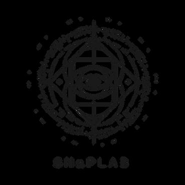 SNaP logo v2_black.png
