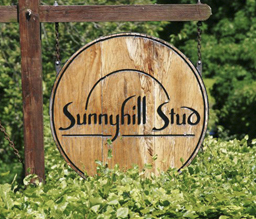 Welcome to Sunnyhill Stud