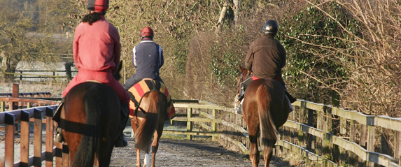 On the way to the gallop