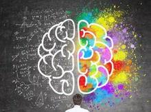 Grafik Gehirn.jpg