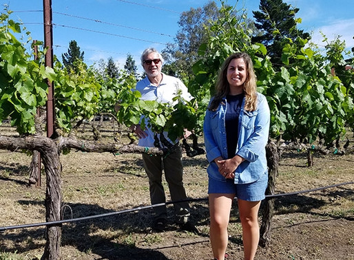 On the Wine Road with Jeff Davis