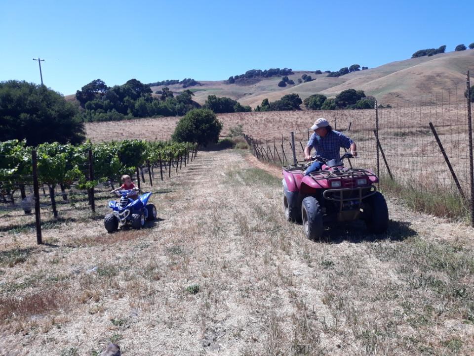 Checking on the 2019 crop. Ken Nerlove with 3rd Generation, Noah Nerlove.