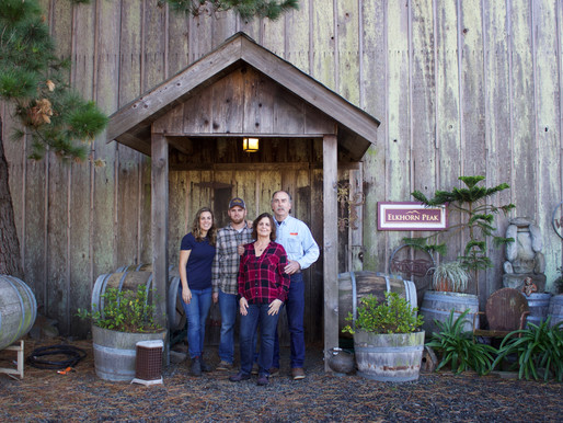 Saving Napa Valley's Roots