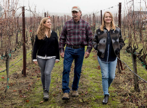 Is Napa running family winegrowers out of business?