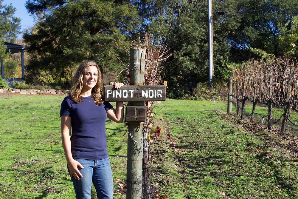 Elise Nerlove Rutchick, second-generation owner of Elkhorn Peak Cellars