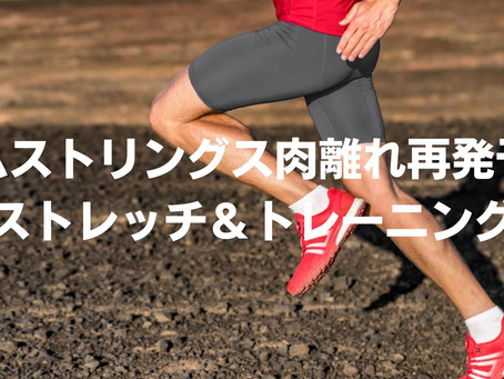 ハムストリングス肉離れ予防に効果的なストレッチ・エキセントリックトレーニング