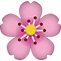 Cherry Blossom.png