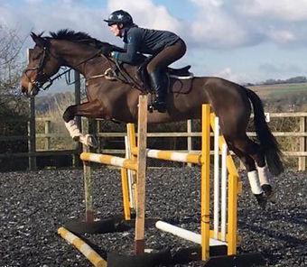 ana-robinson-show-jumping.jpeg