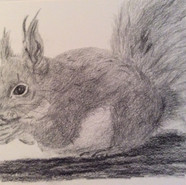 artwork-squirrel.JPG
