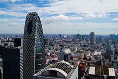 Japón_2.jpg
