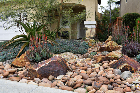 Drought Tolerant Rocky Landscape