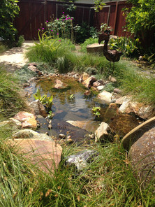 Natural Water Feature Design