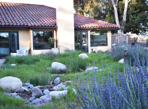 12 Sustainable Gardening Ideas From Landscape Design Pros