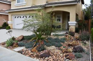 Drought Tolerant Landscaping
