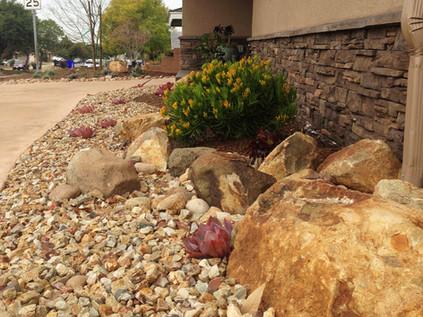 Drought Tolerant Landscape in La Mesa
