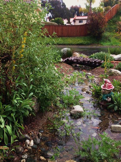 Water Conservation Garden Design