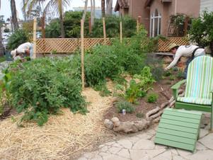 Organic Vegetable Garden Designer