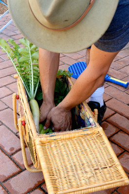 Basket of Homegrown Produce