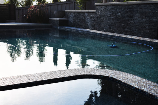 Modern Pool design for del mar resident