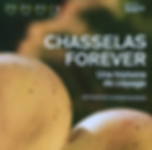 chasselas forever_edited.png