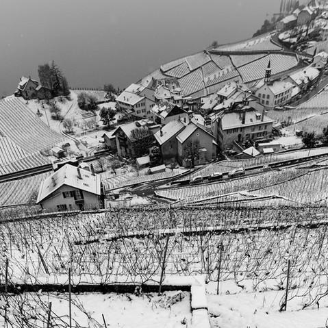 N┬░ 1205-2015_Lavaux en noir et blanc_┬®