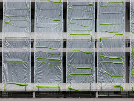Growing Architectural Textile