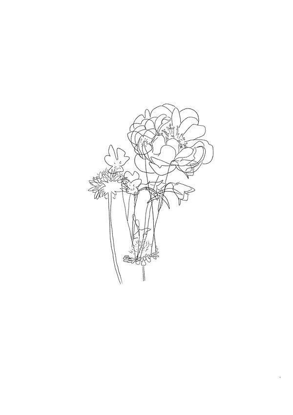 english flowers.jpg