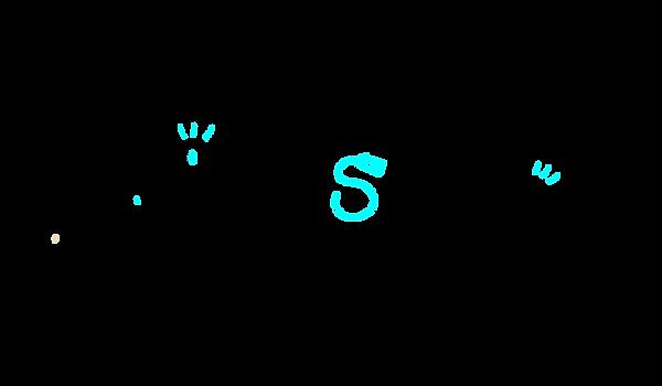 tobey snaps logo fun-02.png