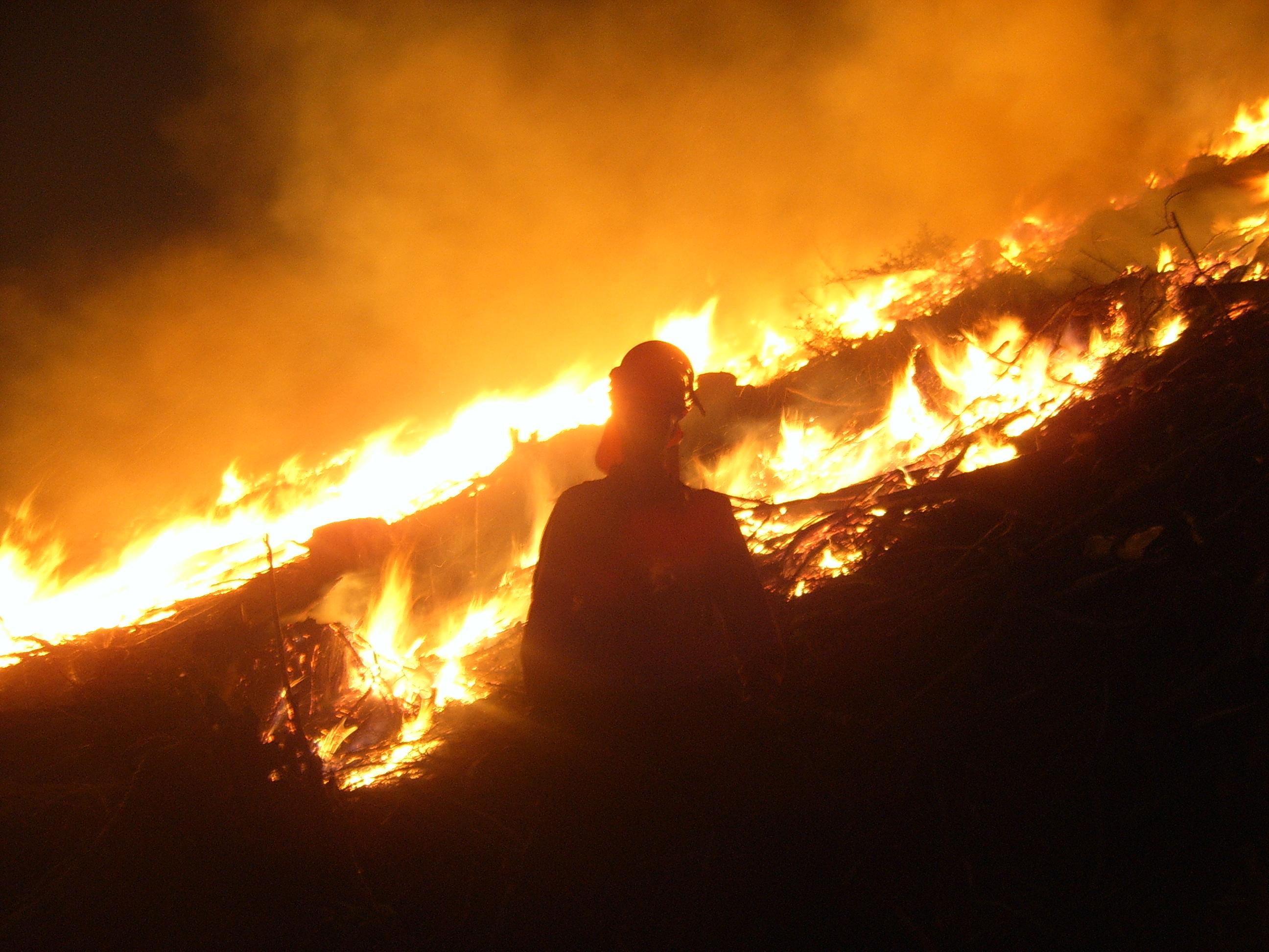 Rosebury prescribed burn 2006