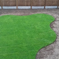 The grass is finished