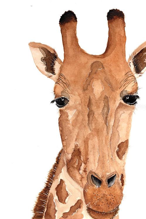 Giraffe Watercolour
