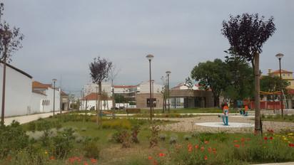 ALPIARÇA_10.jpg