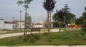 ALPIARÇA 8.jpg
