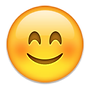 emoticon6.png