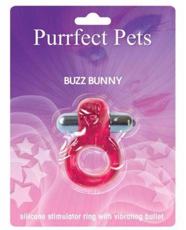 Purrrfect Pet Bunny