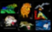 Espèces en voie d'illumination, Jardin des Plantes de Paris, Museum National d'Histoire Naturelle de Paris, structures lumineuses, Lumières, Animaux, Fête des Lumières, Crocodile, Aigle, Grenouille, Bison, Espèces rares, Perroquet, Panda, Serpent, Ours polaire, Stephane Parphot, Flamands Roses, Singes