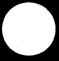 Logo Tacomido circular.png