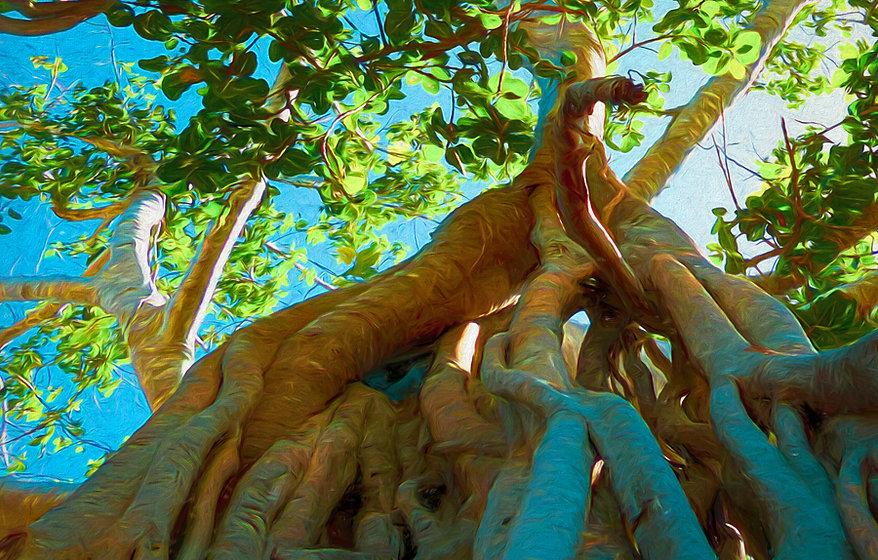 tree002.jpg