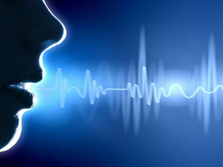 VOICE ANALYSIS TECHNOLOGY