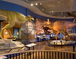 SAN DIEGO HISTORY MUSEUM