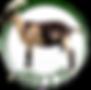 logo ARCCB (2).png