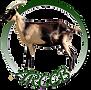 logo ARCCB (2)transp.png