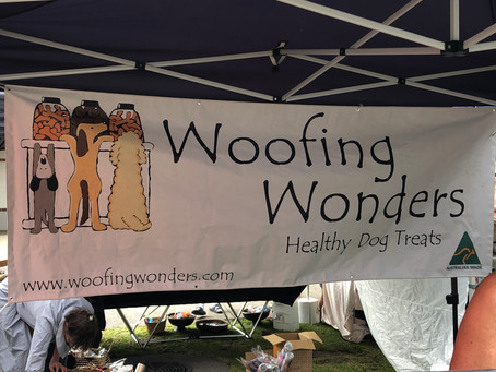 My Latest Discovery - Healthy Dog Treats - even for dogs with Pancreatitis.