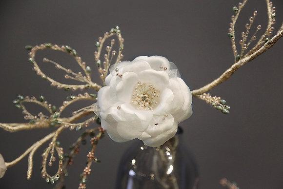 Camellia-山茶花禮