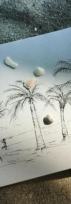 Palm sketch 🐚_Boceto🌴 🌴🌴🌴🖊_._#palm