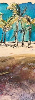 Winter sensation in Miami... Palms and s