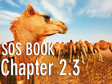 SOS BOOK - Chapter 2.3 Our herd mentality