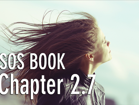 SOS BOOK - Chapter 2.7 What's the purpose of my life?